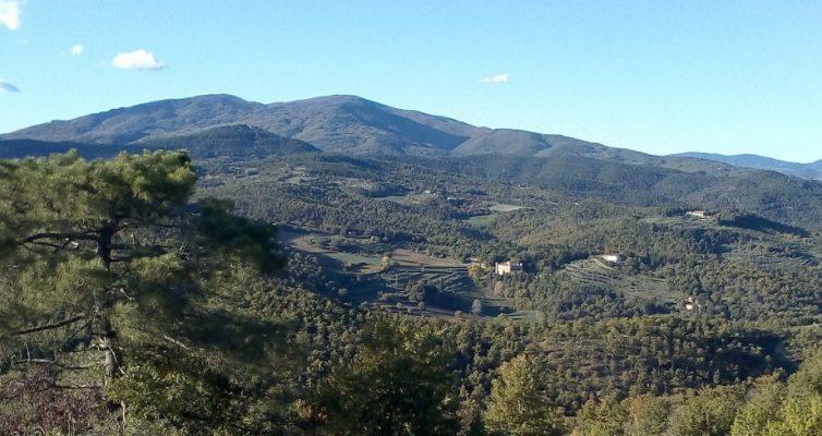 Öl-Gefühle-Retreat in der Toskana